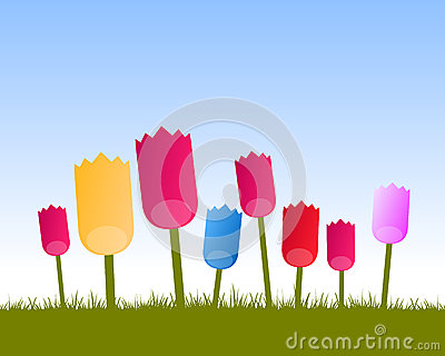 Colored tulips background