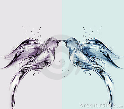 Colored Water Birds of Love