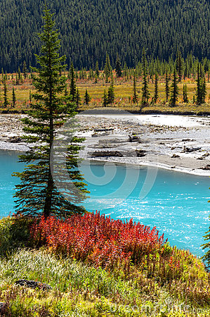 Colores del otoño de la charca del terraplén