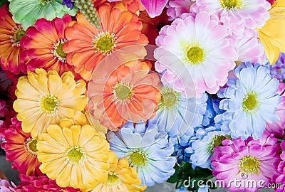 Colorful of artificial gerbera flower blooming