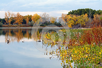 Colorful Autumn Pond