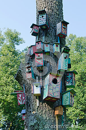 Colorful bird houses nest box hang old tree trunk royalty for Colorful tree house