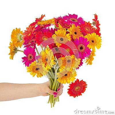 Colorful bouquet Gerber