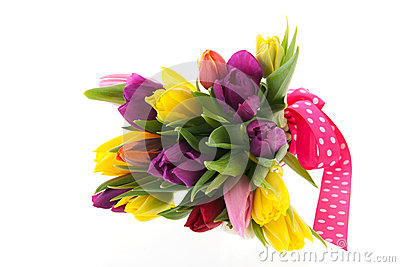 Colorful bouquet tulips for celebration