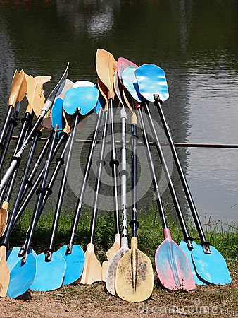 Colorful canoe paddles an a lake bank