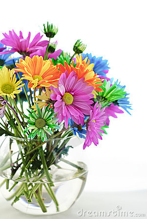 Colorful Daisies In A Vase