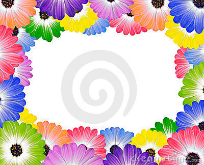 Colorful Daisy Flowers Around Edge of Frame