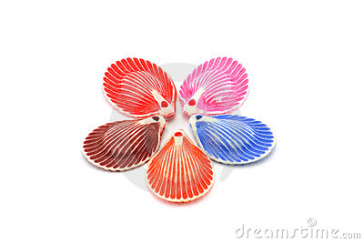 Colorful decorative Shells,Shape of a Star