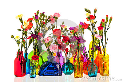 Dianthus flowers in bottles