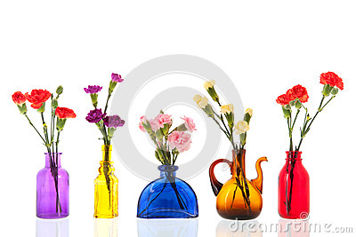 Colorful Dianthus in little glass vases