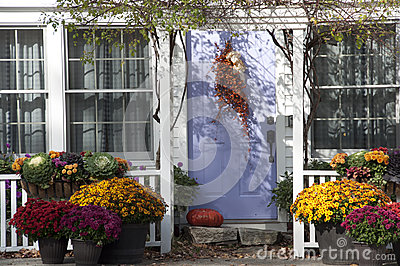 Colorful Dried Flowers Decorate Home Entrance