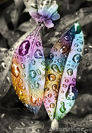 Colorful drops of water