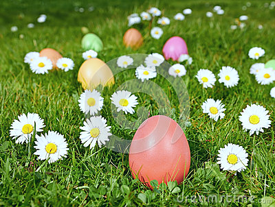 Colorful Easter eggs in a field