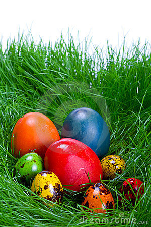 Colorful easter eggs in the grass