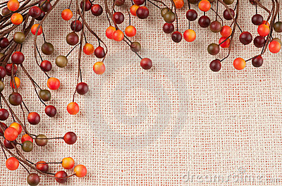 Colorful Fall Berries Against a Burlap Background