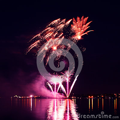 Free Colorful Firework In A Night Sky Royalty Free Stock Images - 31616749