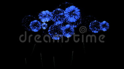 Colorful fireworks at night. Spectacular firecrakers 3d render. Blue version 31 Stock Photo