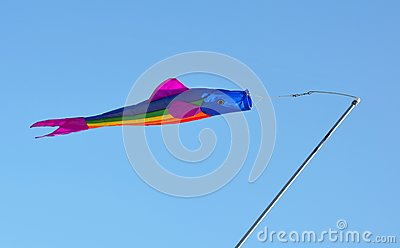 Colorful fish kite
