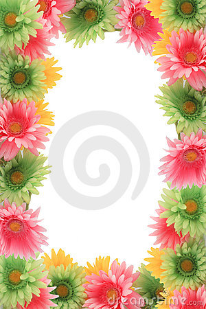 Colorful floral spring border