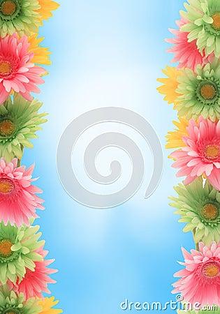 Colorful floral spring border