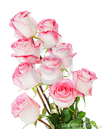 Flower bouquet from roses a isolated on white