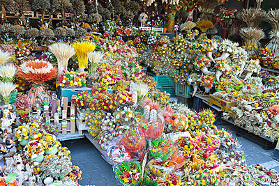 Colorful flower stall
