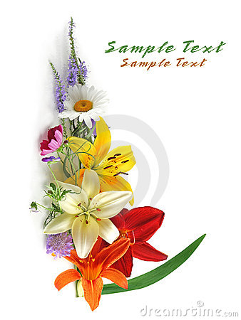 Free Colorful Flowers Royalty Free Stock Photos - 5818138