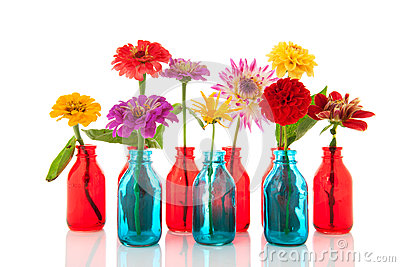 Colorful flowers in bottles