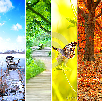 Free Colorful Four Seasons Royalty Free Stock Photo - 29099505