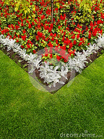 Colorful Garden Flower Bed and Grass Lawn
