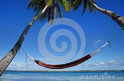 Colorful hammock between palm trees, Ofu island, Vavau group, To