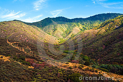 Colorful Hills in King s Canyon