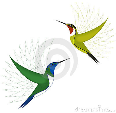Colorful hummingbirds