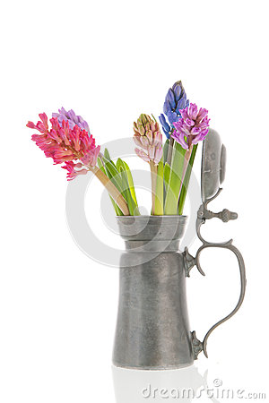 Colorful Hyacinths in tin vase