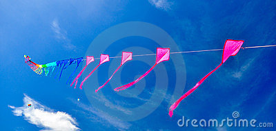 Colorful of kites