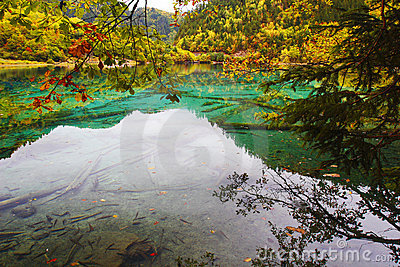 Colorful lake in Jiuzhai Valley