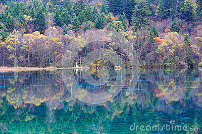 Colorful lake in Jiuzhaigou