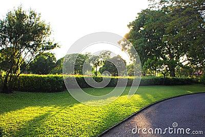 Colorful landscaped formal garden