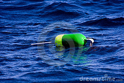 Colorful Lobster Buoy on Water