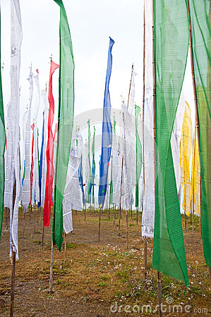 Colorful Mantra flag field in Darjeeling
