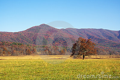 Colorful mountain landscapes in fall