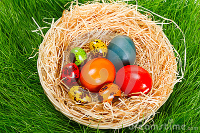 Colorful painted easter eggs in nest