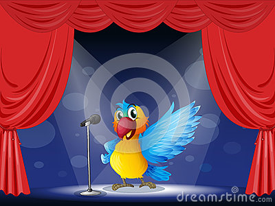 A colorful parrot performing on the stage