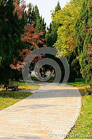 Free Colorful Path Stock Photo - 22386940