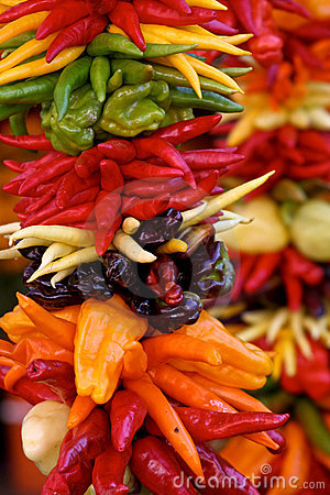 Colorful Peppers on Display