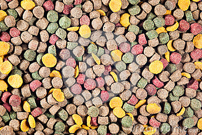 Colorful pet food