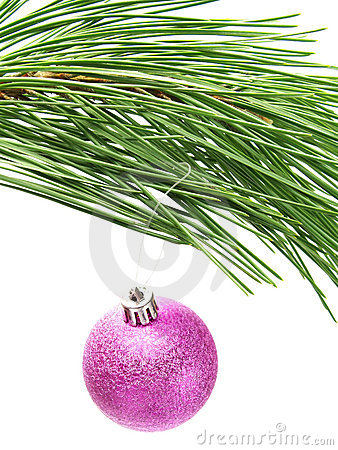 Colorful pink bauble hanging on Christmas tree