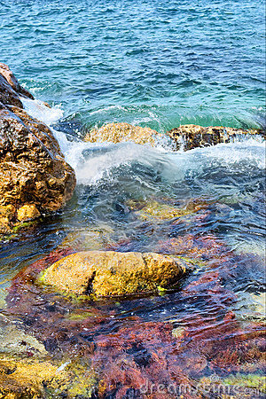 Colorful rocks in sea