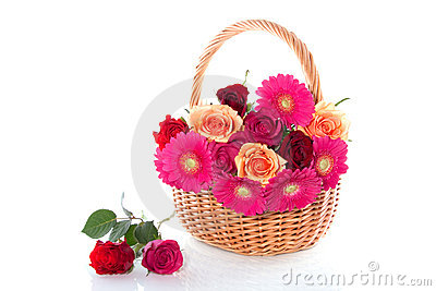 Colorful roses and gerber