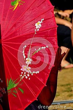 Colorful Shade Umbrella